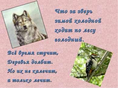 Что за зверь зимой холодной ходит по лесу голодный. Всё время стучит, Деревья...