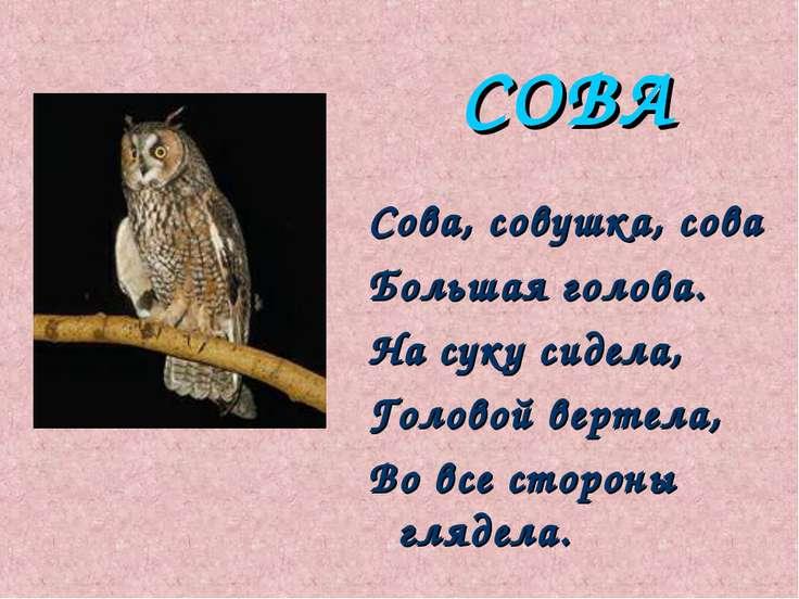 СОВА Сова, совушка, сова Большая голова. Hа суку сидела, Головой веpтела, Во ...