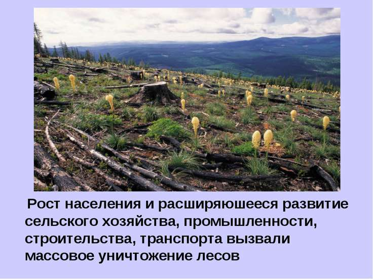 Рост населения и расширяюшееся развитие сельского хозяйства, промышленности, ...