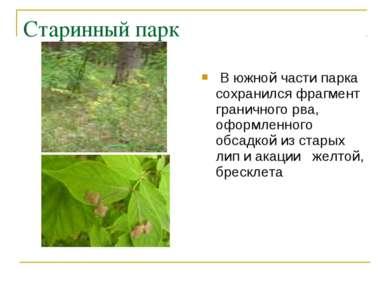 Старинный парк В южной части парка сохранился фрагмент граничного рва, оформл...