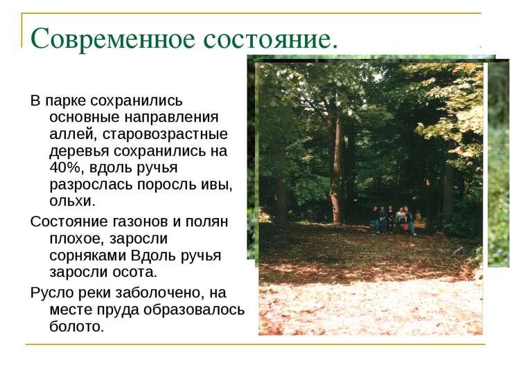 Современное состояние. В парке сохранились основные направления аллей, старов...