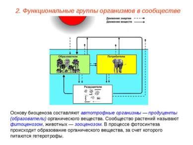 2. Функциональные группы организмов в сообществе Основу биоценоза составляют ...
