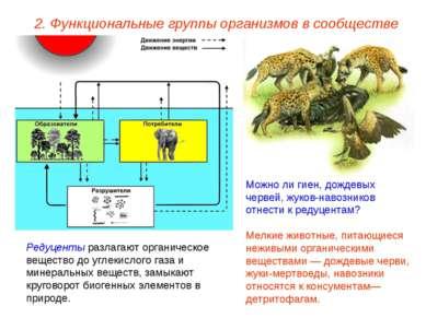 2. Функциональные группы организмов в сообществе Редуценты разлагают органиче...