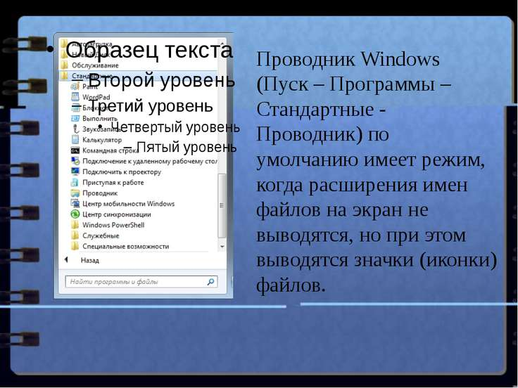 Проводник Windows (Пуск – Программы –Стандартные - Проводник) по умолчанию им...