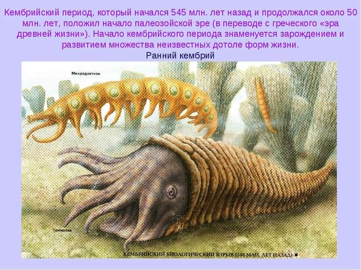 Кембрийский период, который начался 545 млн. лет назад и продолжался около 50...