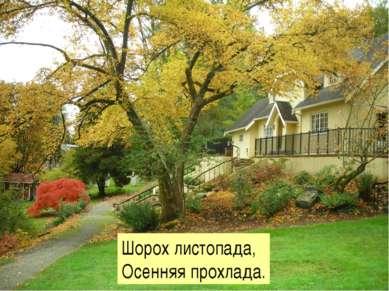 Шорох листопада, Осенняя прохлада.