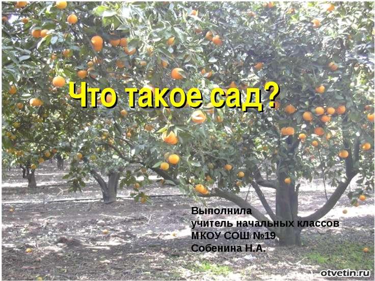 Что такое сад? Что такое сад? Выполнила учитель начальных классов МКОУ СОШ №1...