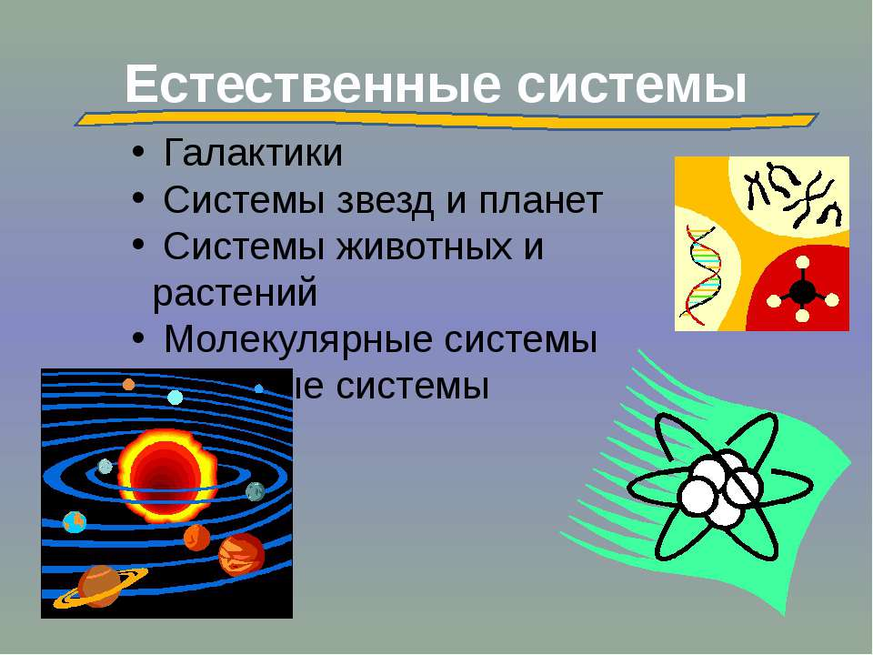 Естественные системы Галактики Системы звезд и планет Системы животных и раст...