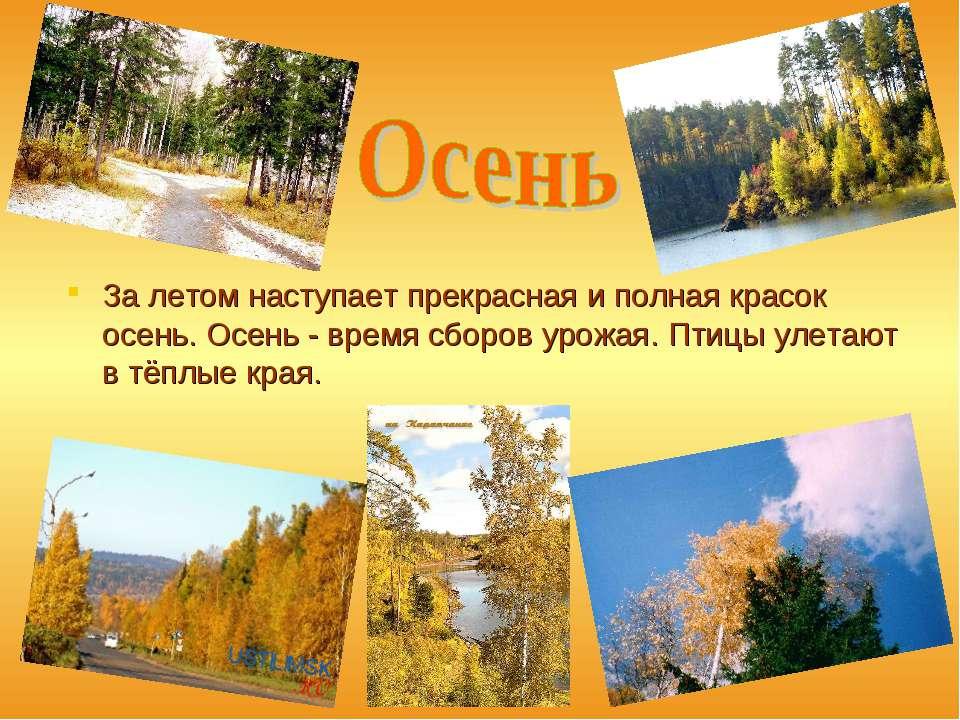 За летом наступает прекрасная и полная красок осень. Осень - время сборов уро...
