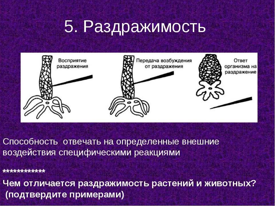 5. Раздражимость Способность отвечать на определенные внешние воздействия спе...