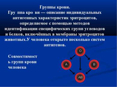 Группы крови. Гру ппа кро ви— описание индивидуальных антигенных характерист...