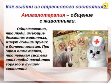 Как выйти из стрессового состояния? Анималотерапия – общение с животными. Общ...