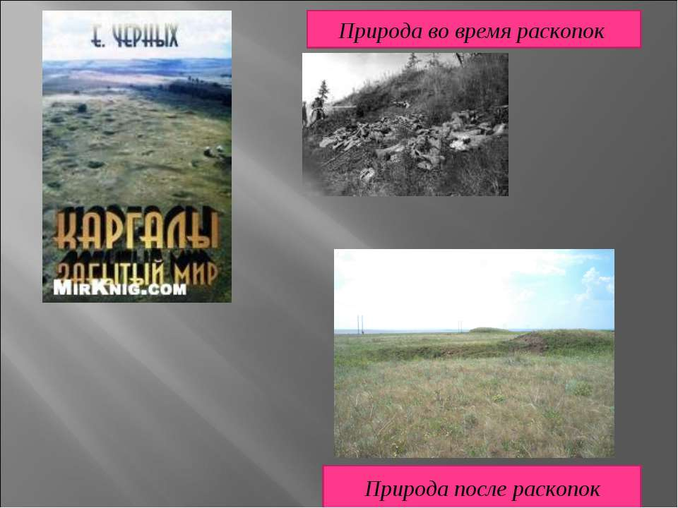 Природа во время раскопок Природа после раскопок
