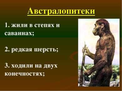 Австралопитеки 1. жили в степях и саваннах; 2. редкая шерсть; 3. ходили на дв...
