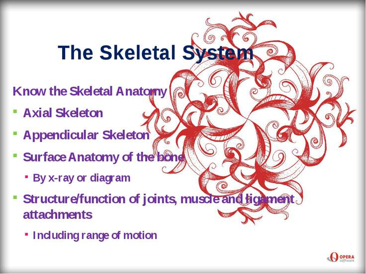 The Skeletal System Know the Skeletal Anatomy Axial Skeleton Appendicular Ske...