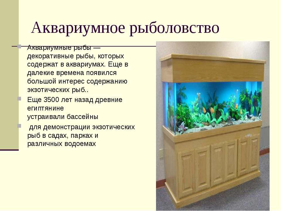 Аквариумное рыболовство Аквариумные рыбы — декоративныерыбы, которых содержа...