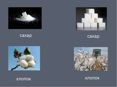 сахар сахар хлопок хлопок