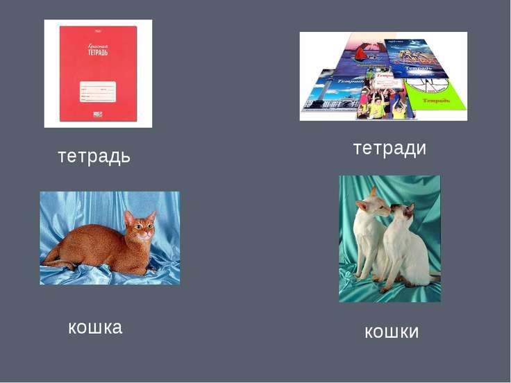 тетрадь тетради кошка кошки