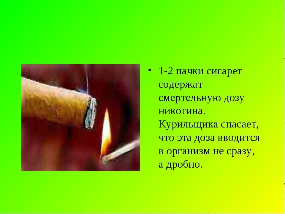 1-2 пачки сигарет содержат смертельную дозу никотина. Курильщика спасает, что...
