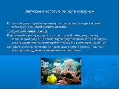 Запускаем золотую рыбку в аквариум Если вы не дадите рыбке привыкнуть к темпе...
