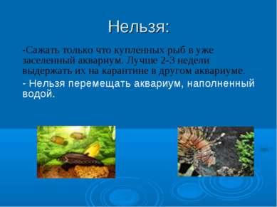 Нельзя: -Сажать только что купленных рыб в уже заселенный аквариум. Лучше 2-3...