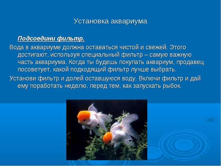 Установка аквариума Подсоедини фильтр. Вода в аквариуме должна оставаться чис...