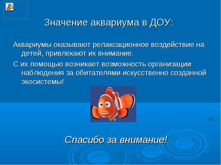 Значение аквариума в ДОУ: Аквариумы оказывают релаксационное воздействие на д...