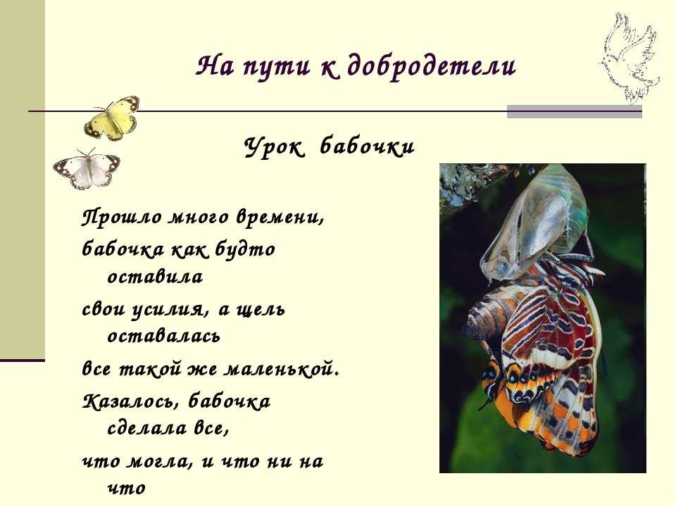 На пути к добродетели Прошло много времени, бабочка как будто оставила свои у...
