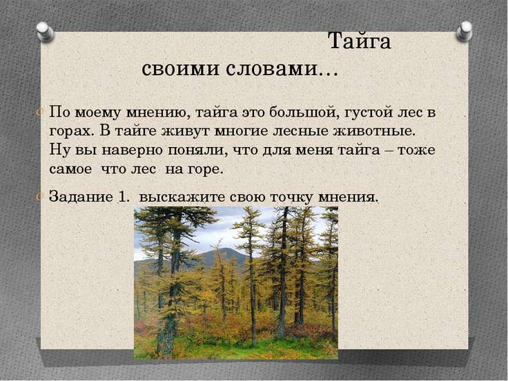 Тайга своими словами… По моему мнению, тайга это большой, густой лес в горах....