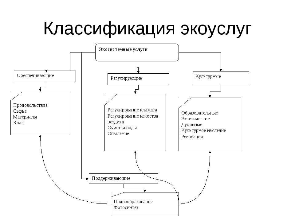 Классификация экоуслуг