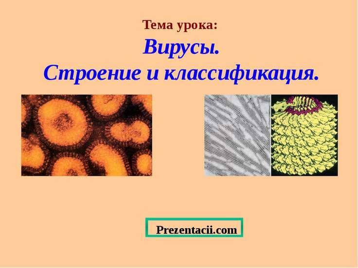 Тема урока: Вирусы. Строение и классификация. Prezentacii.com