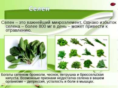 Селен – это важнейший микроэлемент. Однако избыток селена – более 800 мг в де...