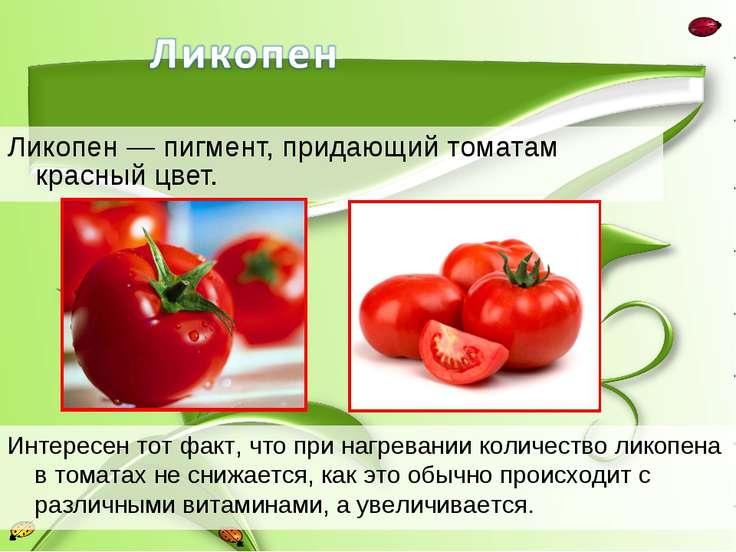 Ликопен — пигмент, придающий томатам красный цвет. Интересен тот факт, что пр...
