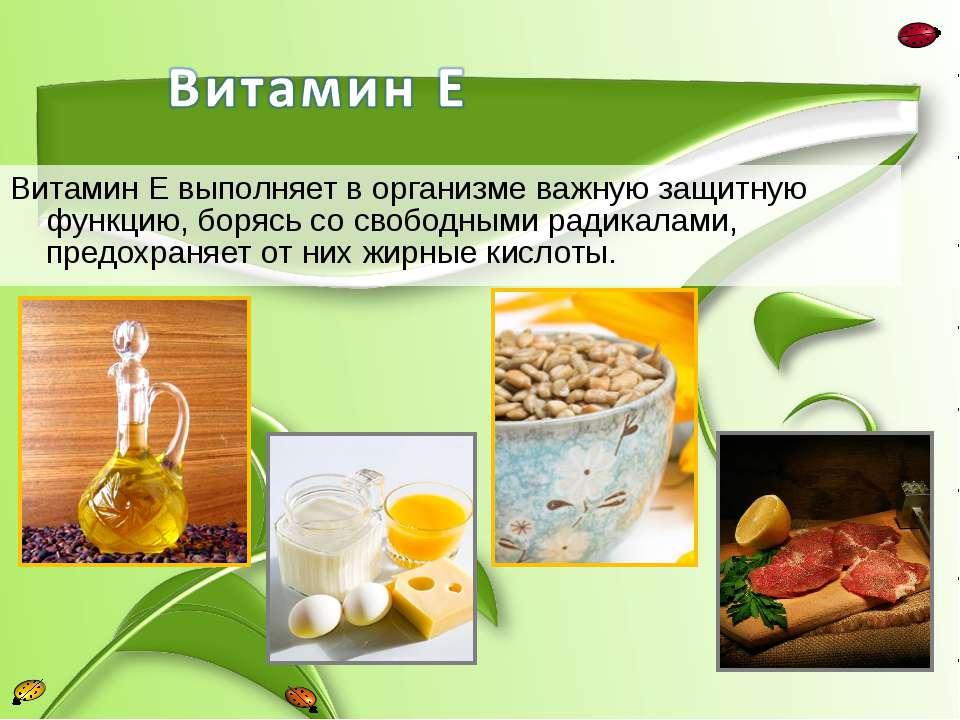 Витамин Е выполняет в организме важную защитную функцию, борясь со свободными...