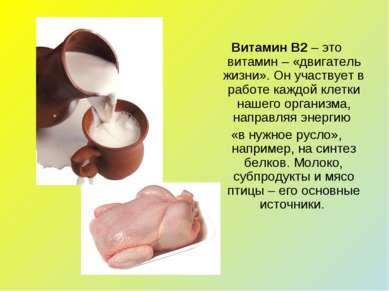 Витамин В2 – это витамин – «двигатель жизни». Он участвует в работе каждой кл...