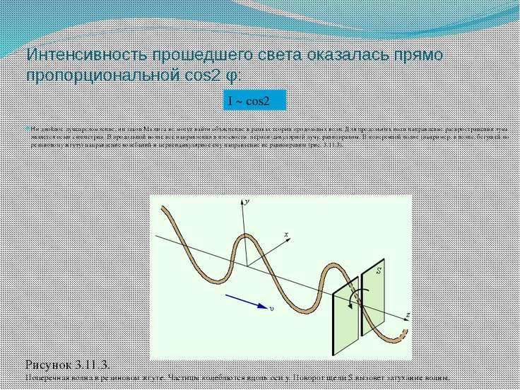 Интенсивность прошедшего света оказалась прямо пропорциональной cos2 φ: Ни дв...