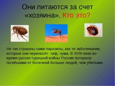 Они питаются за счет «хозяина». Кто это? Не так страшны сами паразиты, как те...