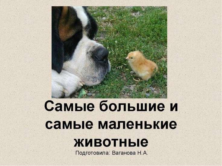 Подготовила: Ваганова Н.А.