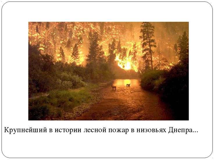 Крупнейший в истории лесной пожар в низовьях Днепра...