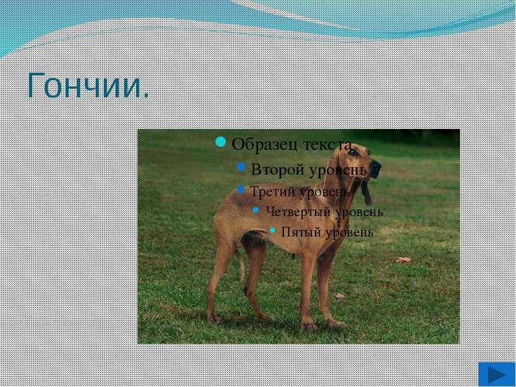 Литература: http://images.yandex.ru/