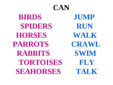 CAN BIRDS JUMP SPIDERS RUN HORSES WALK PARROTS CRAWL RABBITS SWIM TORTOISES F...