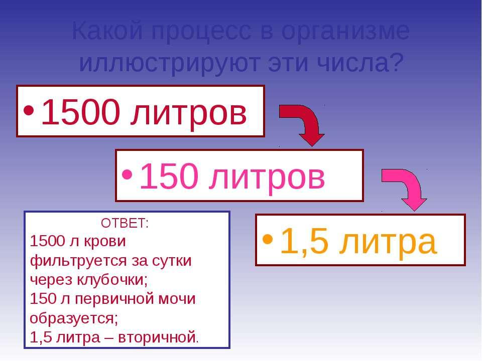 Какой процесс в организме иллюстрируют эти числа? 1500 литров 150 литров 1,5 ...