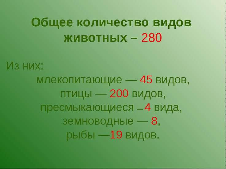 Общее количество видов животных – 280 Из них: млекопитающие — 45 видов, птицы...