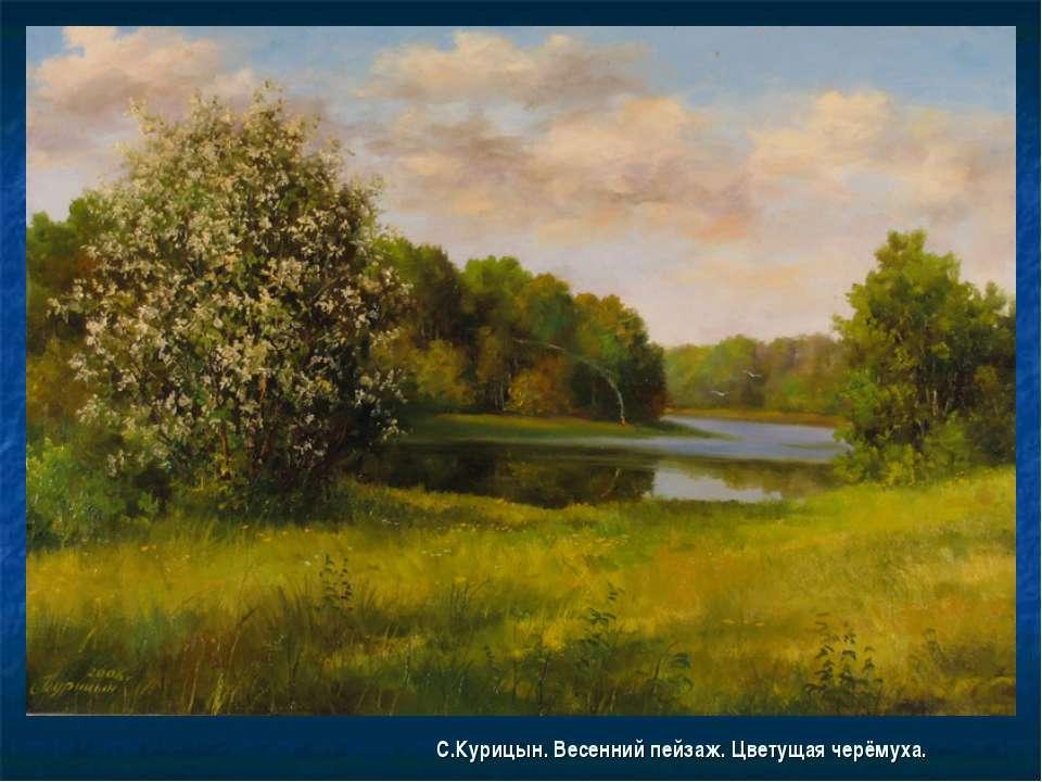 С.Курицын. Весенний пейзаж. Цветущая черёмуха.