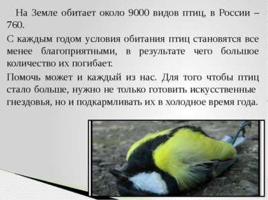 На Земле обитает около 9000 видов птиц, в России – 760. С каждым годом услови...