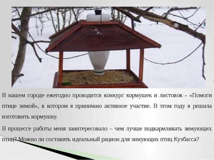 В нашем городе ежегодно проводится конкурс кормушек и листовок - «Помоги птиц...