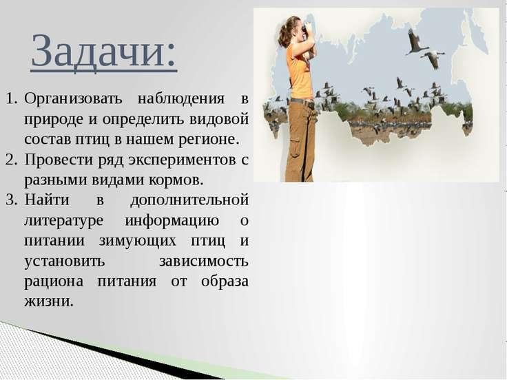 Организовать наблюдения в природе и определить видовой состав птиц в нашем ре...