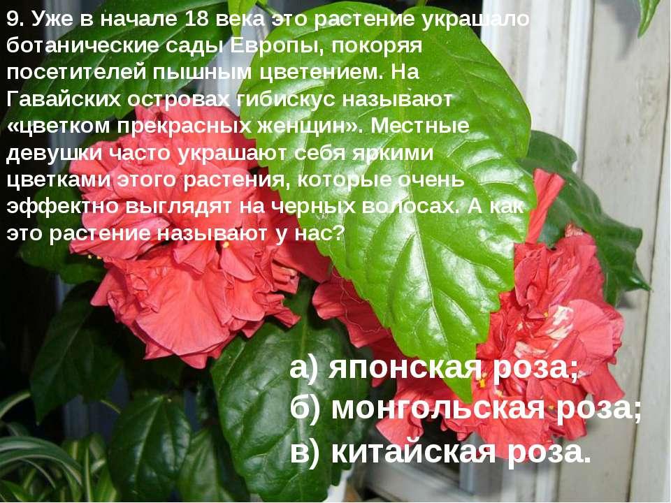 9. Уже в начале 18 века это растение украшало ботанические сады Европы, покор...