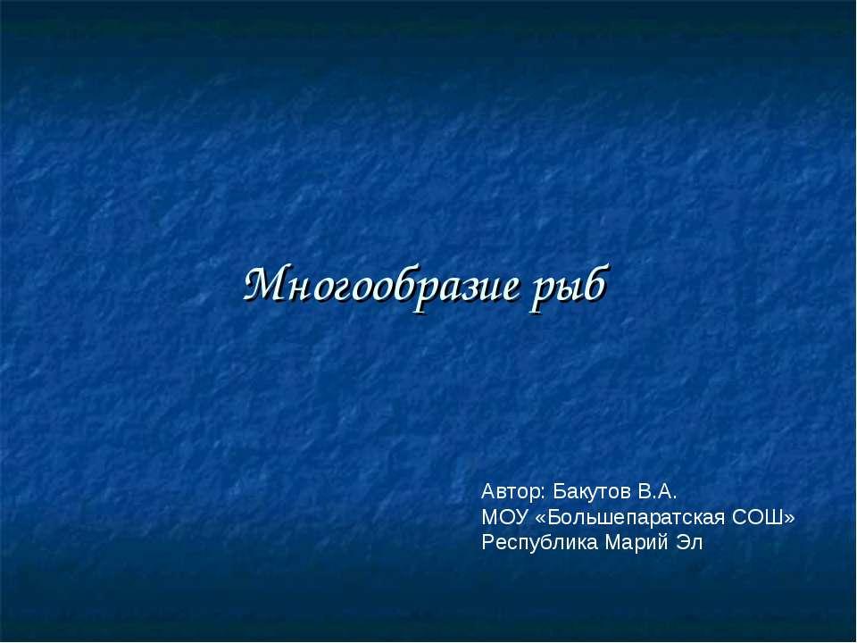 Многообразие рыб Автор: Бакутов В.А. МОУ «Большепаратская СОШ» Республика Мар...