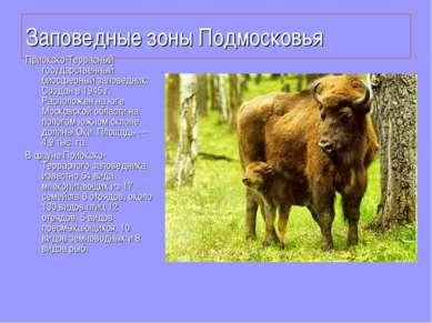 Заповедные зоны Подмосковья Приокско-Террасный государственный биосферный зап...